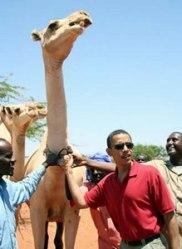 barack-camel-wajid-kenya-8-27-06.jpg