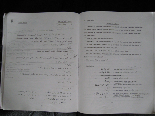 the arabic language essay