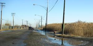 flood-stage5