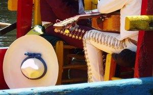 mariachi-leg