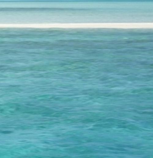 seascape-sig3
