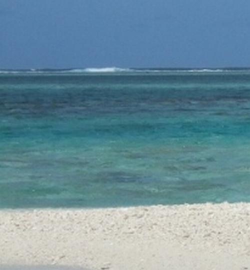 seascape-sig4