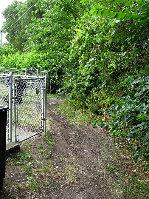 walk-path