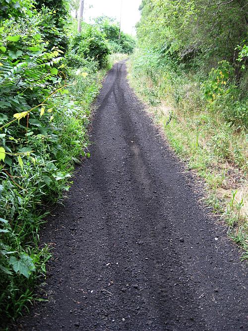 walk-path1