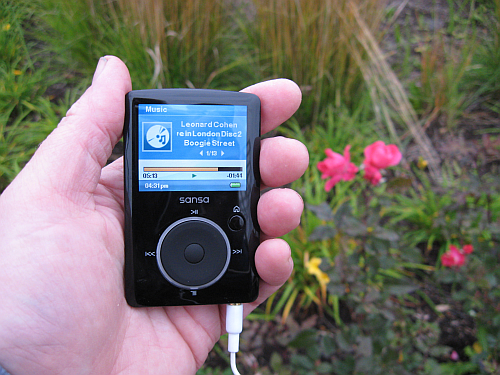 wolf lake mp3 player
